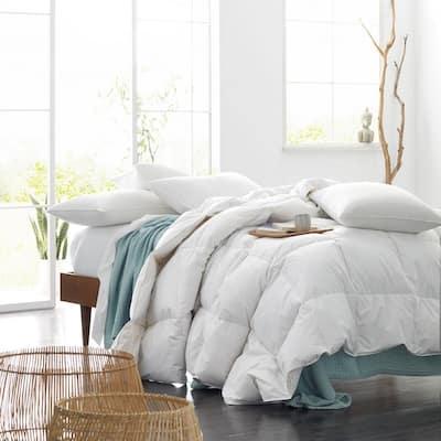 Legends® Hotel Organic Cotton Down Comforter