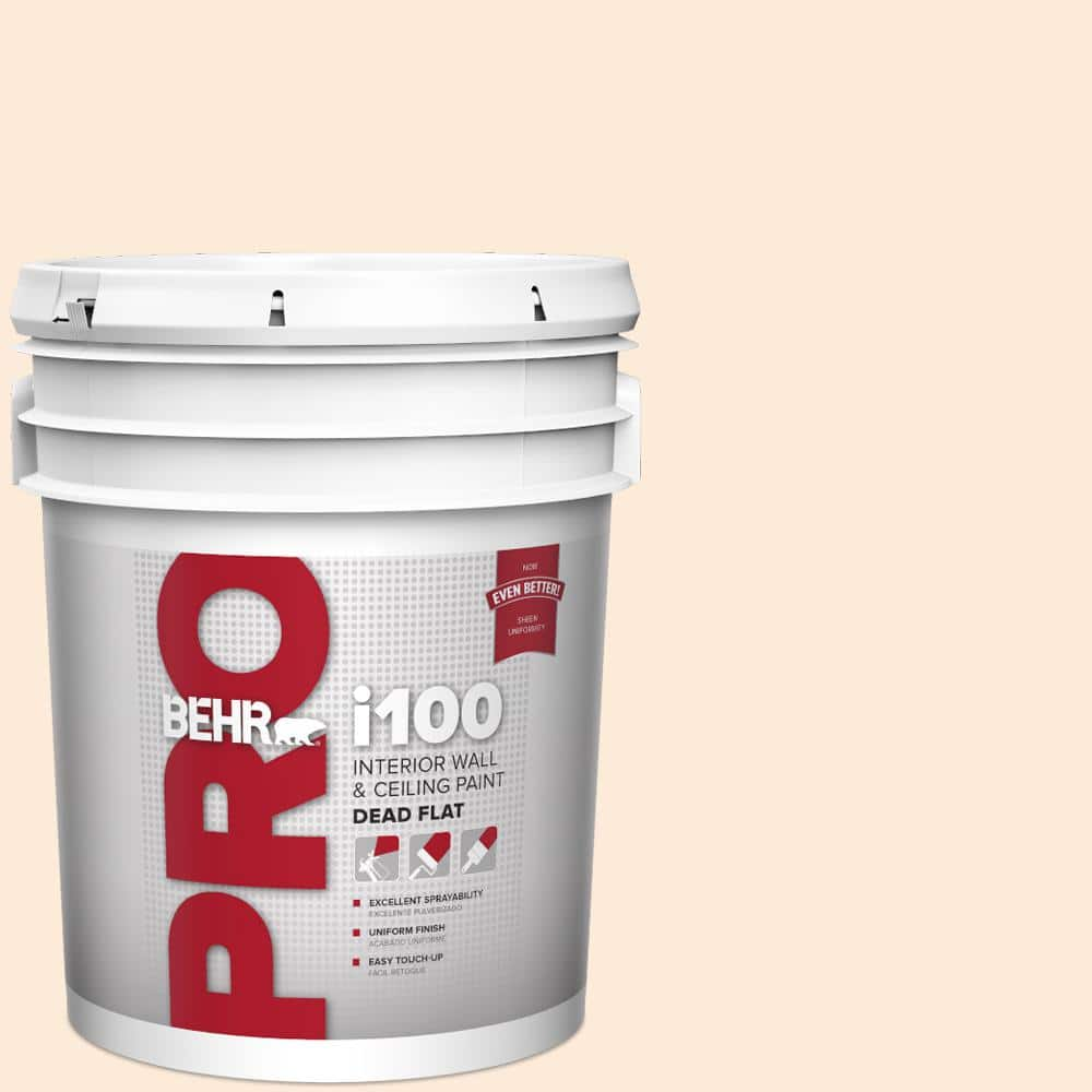 Behr Pro 5 Gal 260e 1 Lilting Laughter Dead Flat Interior Paint Pr10505 The Home Depot