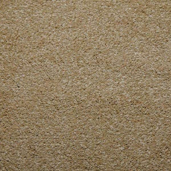Home Decorators Collection Carpet Sample Sweet Dreams Ii Color Camel Saxony 8 In X 8 In Lx 795438 The Home Depot