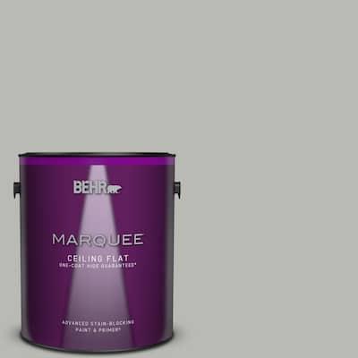 1 gal. #PPU18-11 Classic Silver One-Coat Hide Ceiling Flat Interior Paint & Primer