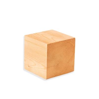 4 in. x 4 in. x 4 in. Cedar Cube Project Panel