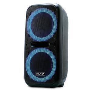 12 in. Dual Rechargeable Party Speaker