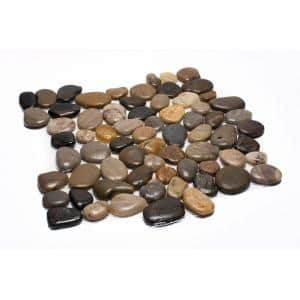 12 in. x 12 in. Mixed Mid-Polish Pebble Stone Floor and Wall Tile (5.0 sq. ft. / case)