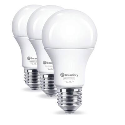 LED Emergency Light Bulb (3-Pack)