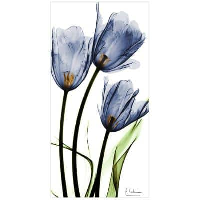 """""""Three Blue Tulips"""" Unframed Free Floating Tempered Glass Panel Graphic Wall Art Print 24 in. x 48 in."""