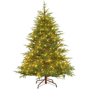 6.5 ft. Frasier Grande Tree with Clear Lights
