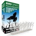 10 ft. Plastic Bird Spikes