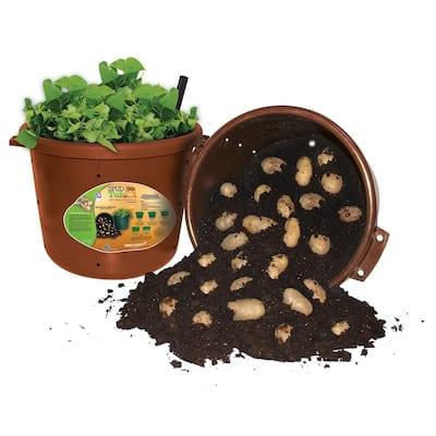 City Pickers Spud Tub 17.5 Gal. Garden Potato Planter in Terra Cotta