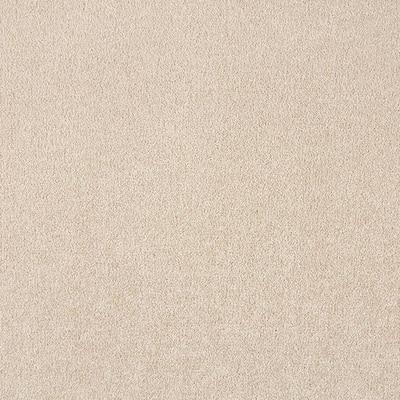 Silver Mane I - Color Berkshire Texture 12 ft. Carpet