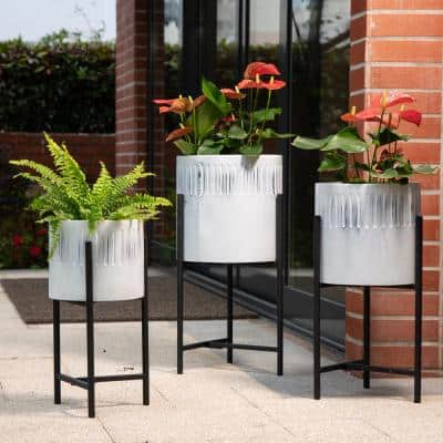 Washed White Metal Plant Stands (Set of 3)