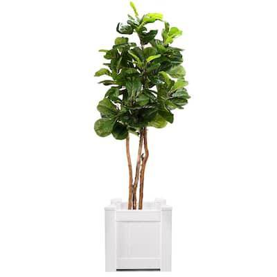 18 in. x 18 in. Plastic Outdoor Square White Garden Planter Box