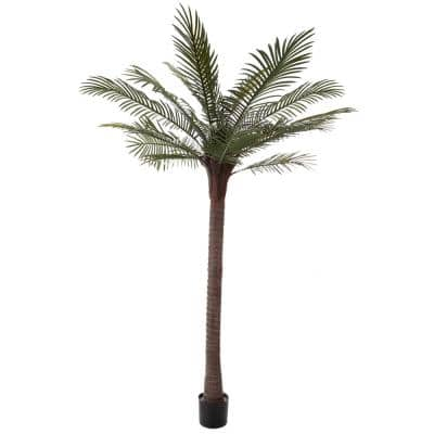 6.5 ft. Robellini Palm Tree - Potted Faux Tropical Floor Plant with Natural Looking Greenery