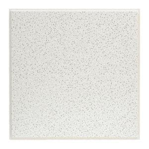 2 ft. x 2 ft. Radar White Shadowline Tapered Edge Lay-In Ceiling Tile, pallet of 320 (1280 sq. ft.)