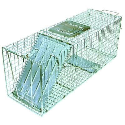 Answer Single Door Live Animal Cage Trap for Medium Size Pests Steel Wire