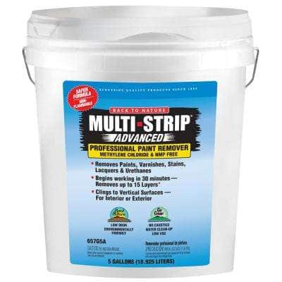 Advanced Series 5 gal. Multiple Layer Paint and Varnish Remover