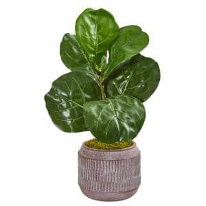 23 in. Fiddle Leaf Artificial Plant in Stoneware Planter
