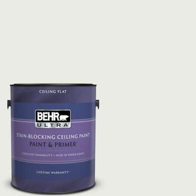 1 gal. #PPU12-12 Gallery White Ceiling Flat Interior Paint & Primer