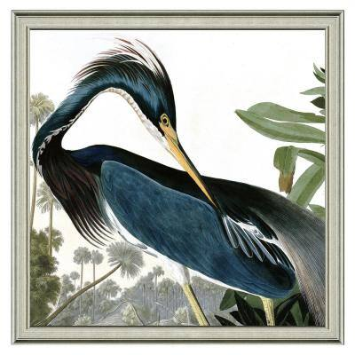 """24 in. x 24 in. Full Size """"The great blue heron"""" Framed Archival Paper Wall Art"""