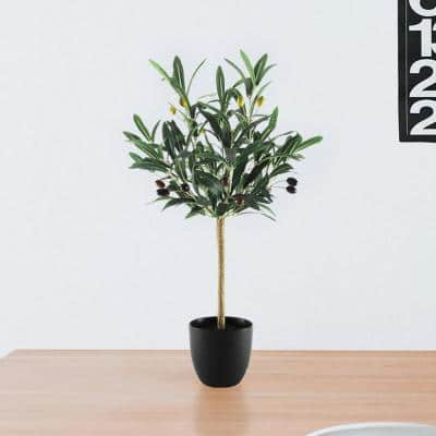 2 ft. Petite Artificial Olive Tree in Pot