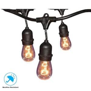 12-Light 24 ft. Black Commercial String Light (2-pack)