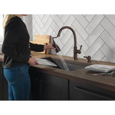 Spargo Single-Handle Pull-Down Sprayer Kitchen Faucet with ShieldSpray and Soap Dispenser in Venetian Bronze
