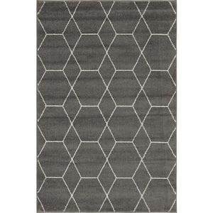 Trellis Frieze Dark Gray/Ivory 6 ft. x 9 ft. Geometric Area Rug