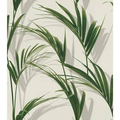 Cyperus Grey Reed Wallpaper Sample