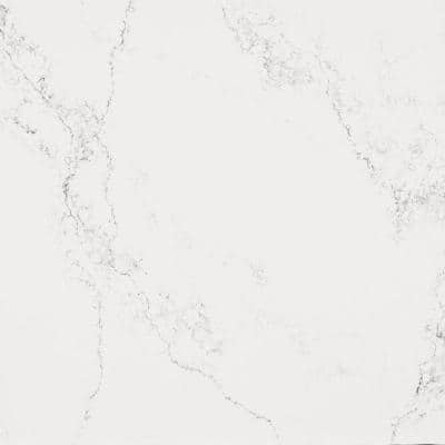 10 in. x 5 in. Quartz Countertop Sample in Empira White