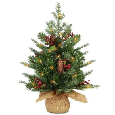 2 ft. Battery Operated Nordic Spruce Artificial Christmas Tree with Warm White LED Lights