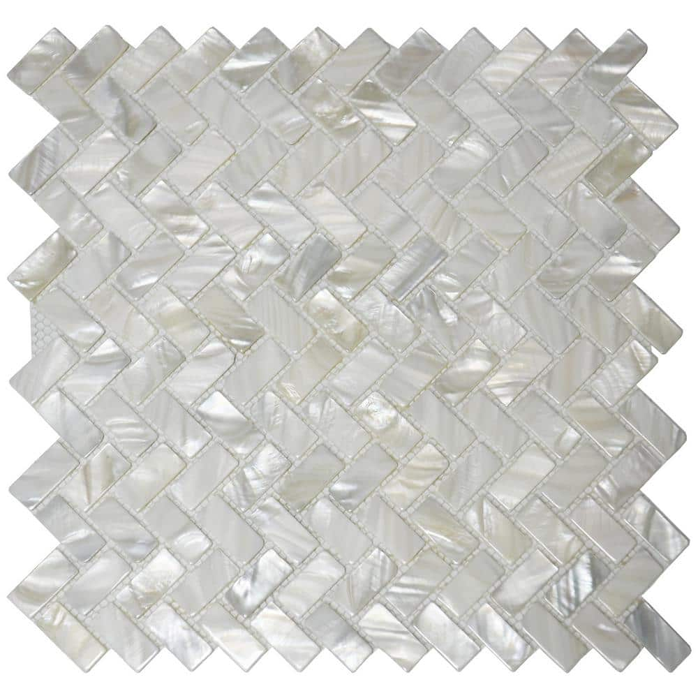 White South Sea Mother Of Pearl Shell Sku#M628