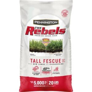 The Rebels 20 lbs. Tall Fescue Grass Seed Blend