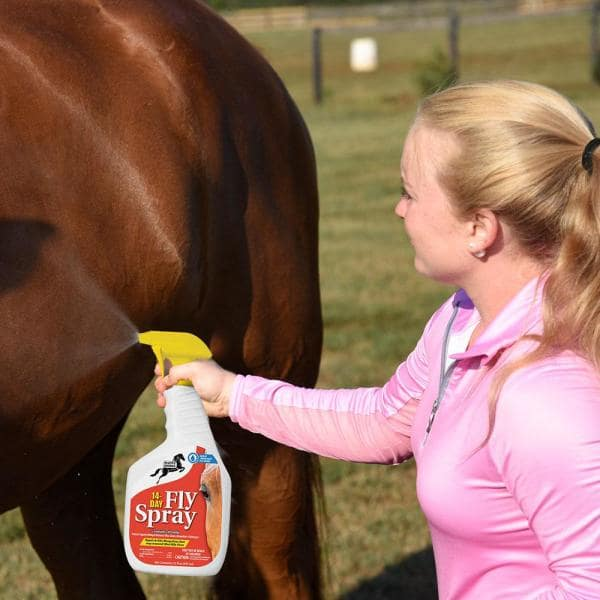 Harris 32 Oz 14 Day Fly Spray For Horses 3 Pack 3hhappy 32 The Home Depot