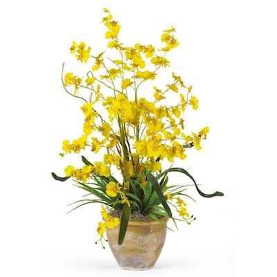 26 in. Dancing Lady Silk Orchid Flower Arrangement