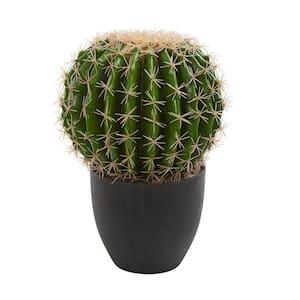 Indoor Cactus Artificial Plant