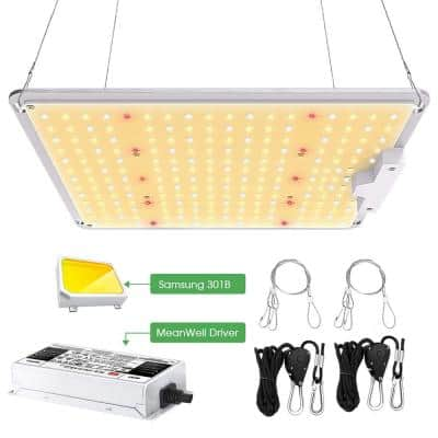 12 in. 1000-Watt Gray Dimmable Full Spectrum LED Grow Light Daylight with Samsung LM301B LEDs, MeanWell Driver