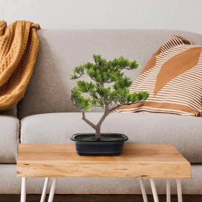 14.5 in. Artificial Pine Bonsai Tree - Potted Faux Plant with Ceramic Planter - Natural Looking Greenery Accent