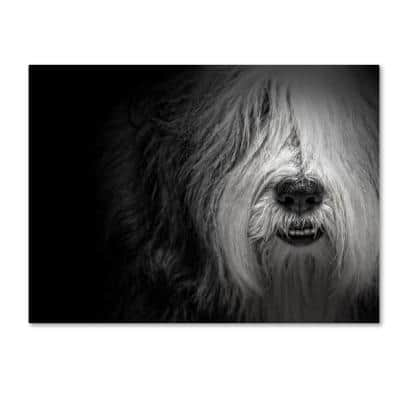 Sheepdog by Lori Hutchison Floater Frame Animal Wall Art 24 in. x 32 in.