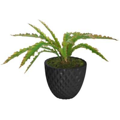 39.1 in. H Real Touch Agave in Fiberstone Planter