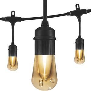 Vintage 12 ft. Black Cafe Integrated LED String Lights