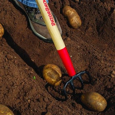 Potato Hook
