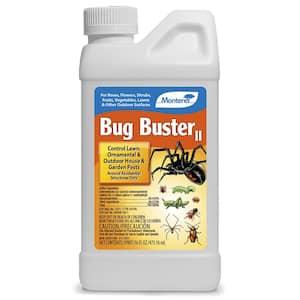 2-Pints Bug Buster
