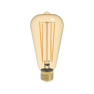 40W Equivalent Warm White (2200K) ST19 Dimmable Amber LED Light Bulb