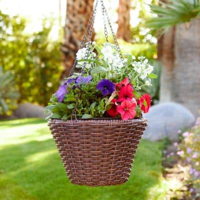 Cambridge 12 in. Dia x 8 in. H Brown Resin Wicker Hanging Planter with Liner