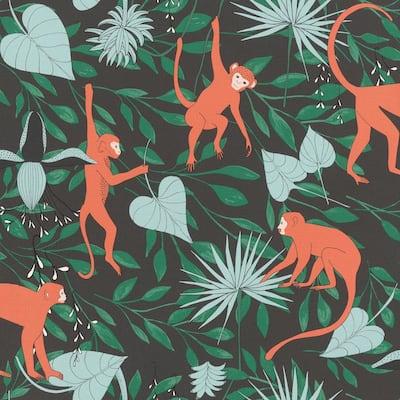 Langur Black Monkey Troop Wallpaper Sample