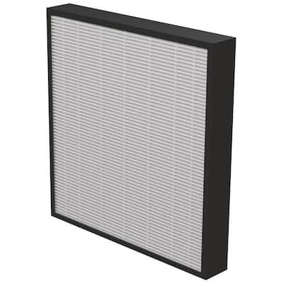 AeraMax Pro 2 in. Filter (2-Pack)