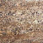 3 in. x 3 in. Granite Countertop Sample in Delicatus Gold