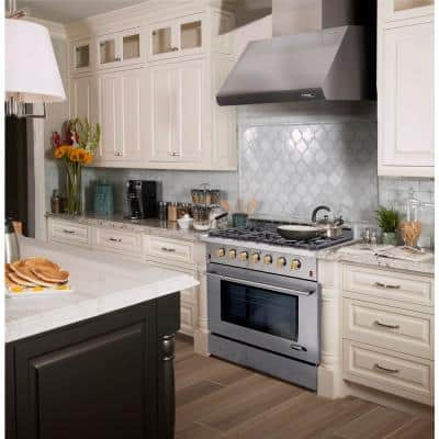 Entree Bundle 36 in. 5.5 cu. ft. Pro-Style Liquid Propane Gas Range Convection Oven and Hood in Stainless Steel and Gold
