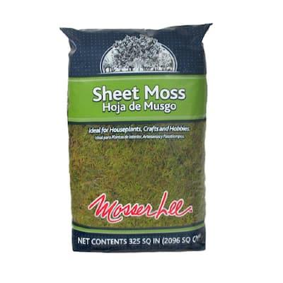 325 sq. in. Sheet Moss Soil Cover