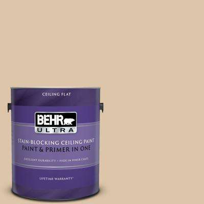1 gal. #PPU4-13 Sand Motif Ceiling Flat Interior Paint and Primer in One