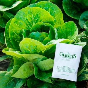 Lettuce Romaine Paris White Cos (1,000 Seed Packet)